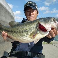 urakawamasanori
