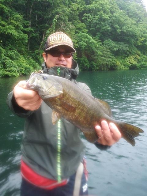 野尻湖にてコバジン(シケーダーマジック)で50Upのスモールをキャッチ!