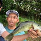Bass777