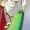 徳島県旧吉野川で開催された『Ultimate World CUP』にて、ルドラSPがウィニングルアーとなりました!!