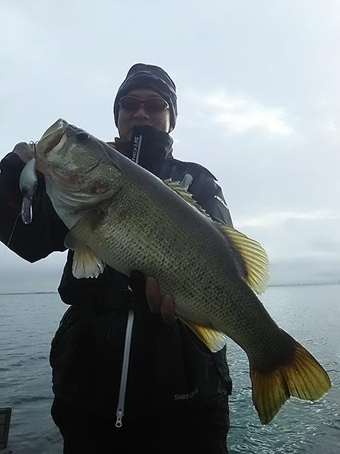 琵琶湖にて、ブリッツMAX DRでロクマルがキャッチされました!