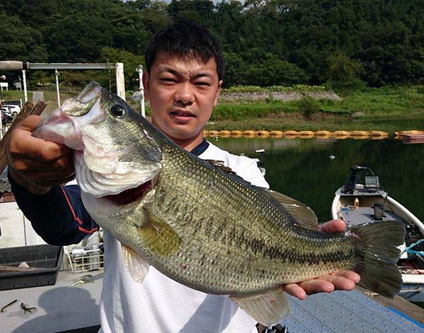 津久井湖でドライブシャッド4.5″にて49cm 2,500gのビッグバスがキャッチされました!