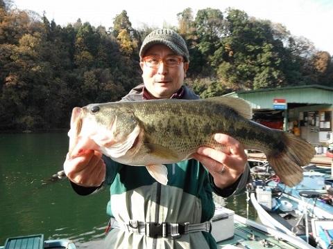 11/26(木)神奈川県相模湖にてドライブビーバーマグナムを駆使し綾 秀樹様が52.5cmのビッグフィッシュをキャッチされました!!